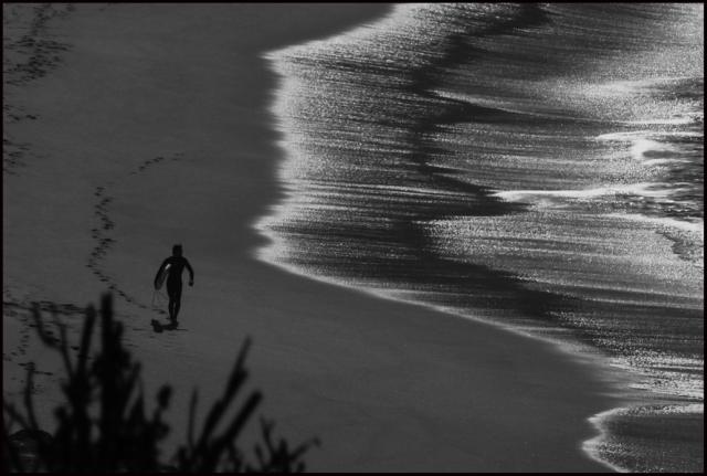 web surf