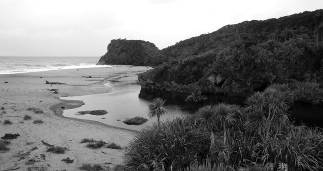 web beach 1