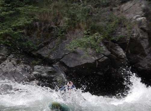 web kayak 1