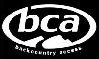 BCA 1